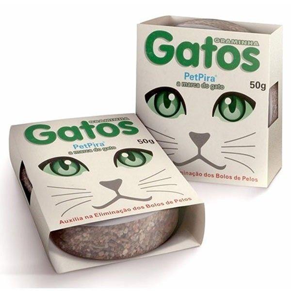 """Cuidado com as """"graminhas"""" e """"matinhos"""" que seus gatos e gatinhos estão comendo. Essa graminha pode estar contaminada. O matinho pode ser tóxico. Lembre-se que """"graminhas"""" e """"matinhos"""" de jardins podem estar impregnados de sujeiras, poluição e vermes, e pode fazer mal a saúde do animal. Essa graminha você prepara em casa, é só colocar água e em 6 a 8 dias nascem brotos limpos e nutritivos de aveia e milheto. Sem química. Naturalmente. Sementes de aveia ..."""