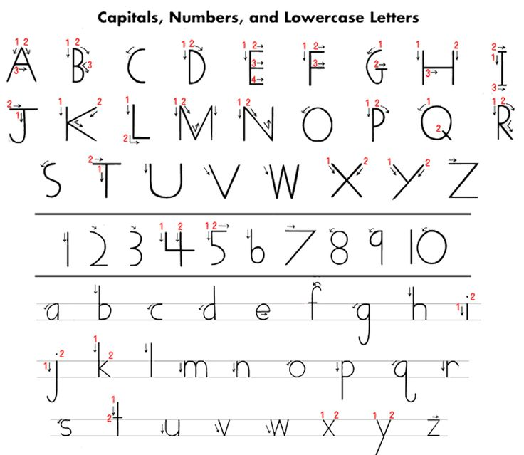 Handwriting Without Tears Printables | Here is a handy letter-writing guide...