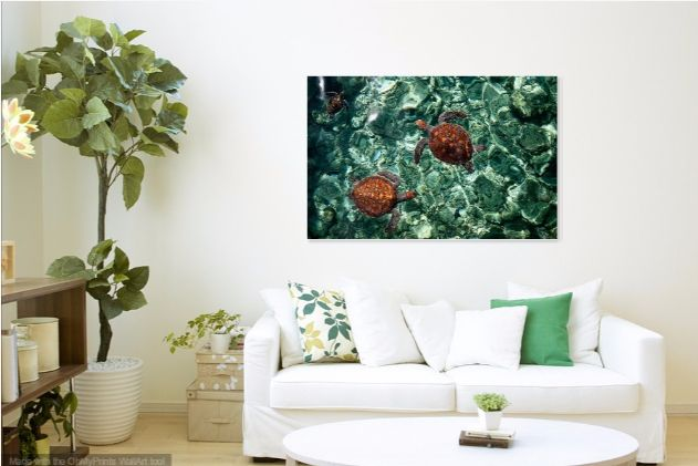 Fragile Underwater World. Sea Turtles In A Crystal Water. Maldives by Jenny Rainbow  I made this photo of the small and fragile babies of the sea turtles in Maldives, where is the water with crystal clarity allow to photograph them even without underwater camera! #JennyRainbowFineArtPhotography #Turtles #Maldives #Canvas #HomeDecor #WallArt