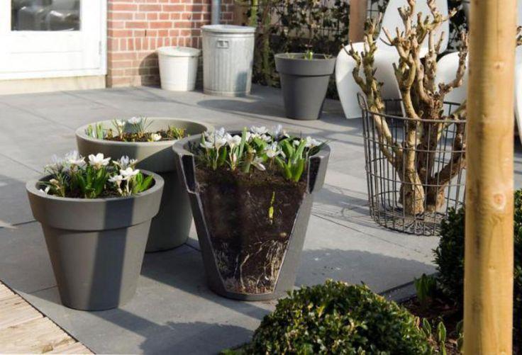 Het maken van bloemenlasagne niet moeilijk. De volgende ingrediënten zijn nodig: royale potten of een balkonbak, hydrokorrels, potgrond en bloembollen. Zorg voor gaatjes in de bodem van de pot of