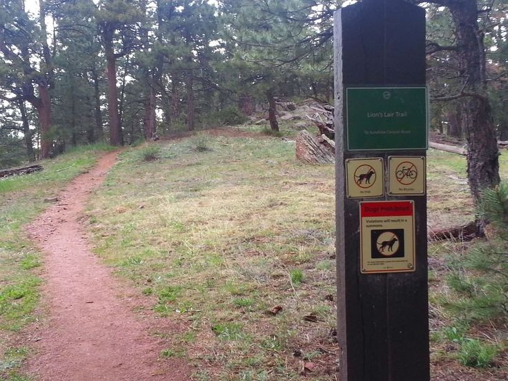 Boulder's Lion's Lair Trail up Mount Sanitas offers a new look at the classic mountain hike, exploring the more wild side of Mount Sanitas.