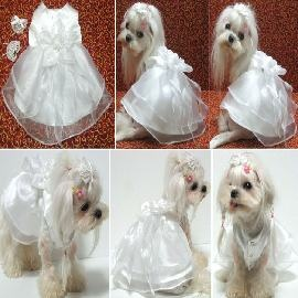 31 best images about dog and cat wedding dress on pinterest for Wedding dress for dog