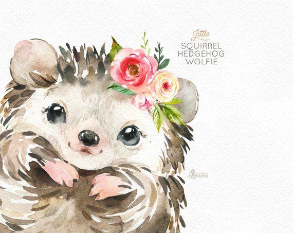 Little Squirrel Hedgehog Wolfie Watercolor Animals Clipart Woodland Forest Flowers Kids Cute Nursery Art Nature Realistic Friends Watercolor Animals Watercolor Images Animal Drawings