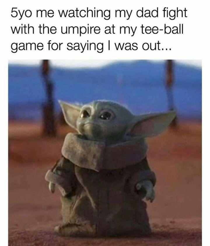 Baby Yoda Ok Boomer Pets Boomer Funny
