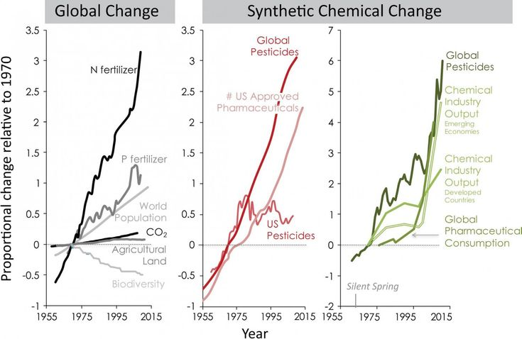 PHYS.ORG: Synthetic chemicals: Ignored agents of global change