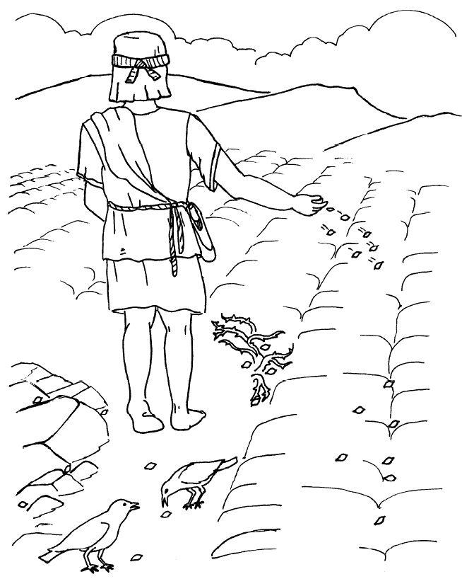 Parábola del sembrador - Página para Colorear