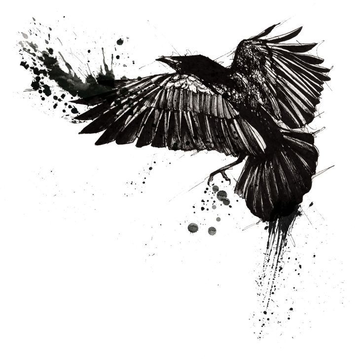 1000 Ideas About Raven Tattoo On Pinterest Tattoos Crow cool tattoos designs