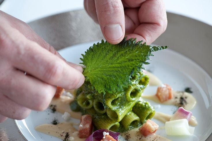 Lespresso italys own michelin guide food critic