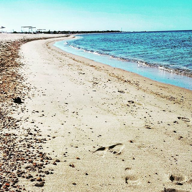 WEBSTA @ kayihaninsta - #enez #altinkum #beach #igers #igdaily #instagood #instalike #bestoftheday #besties #picoftheday #photooftheday #photogrid #clouds #cloudporn #amazing #gununkaresi #objektifimden #beachlife #turkey #edirne #saroz #vsco #vscocam #ainos #gf #love #tbt