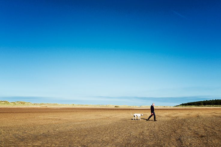 Walking the dog, Holkham style.