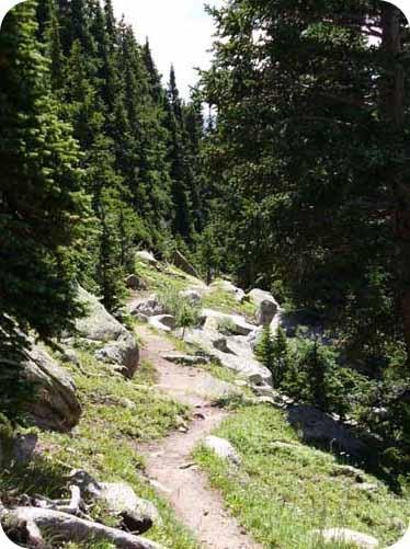 Lenawee trail near A-Basin in Summit County CO. Montezuma!