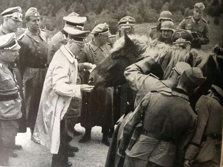 The Führer feeds a Pferd in France 1940 - MädchenFürWolf ...