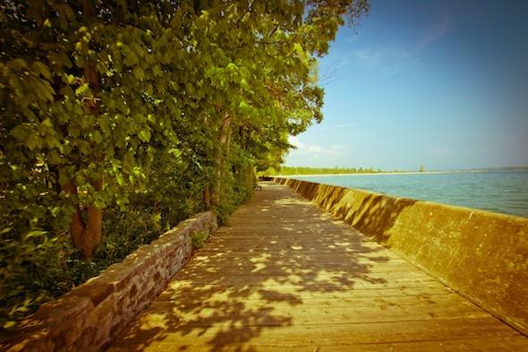 Boardwalk on the Toronto Island's Ward Island.