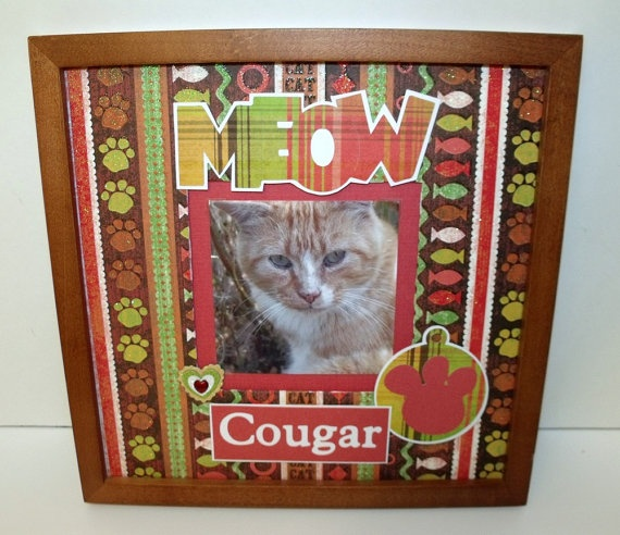 90 Best Images About Cat Picture Frames On Pinterest