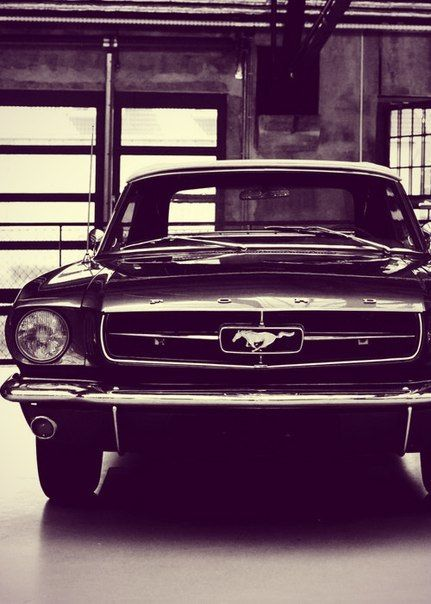 """this is an black and white image of a Ford Mustang Fast Back which is my dream car"" Bay Warren"