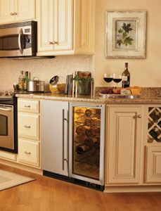 Best Of Bar Fridge and Ice Maker