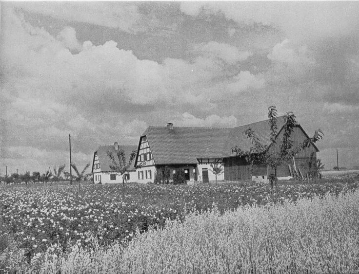 Bauernsiedlung in Schlesien