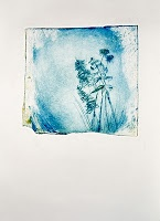 """Print by Mireia Rosich: """"Wildflowers"""" dry point"""