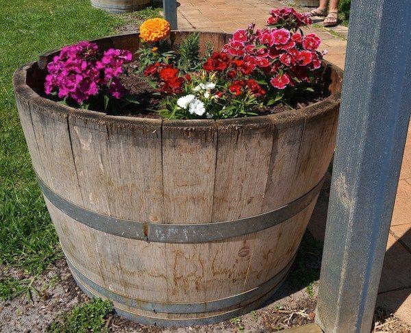 Wine barrel full of flowers at Edwards Wines Margaret River