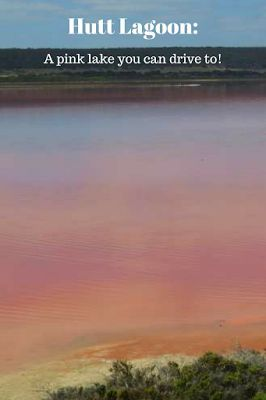 Hutt Lagoon, Western Australia: A pink lake you can drive to.