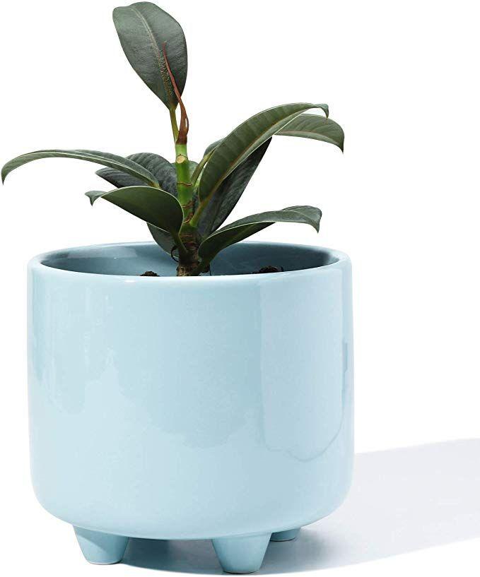 Amazon Com Potey Plant Pot With Drainage Hole 5 3 Inch Glazed Ceramic Modern Planters Indoor Bonsai In 2020 Modern Planters Indoor Modern Planters Planting Flowers