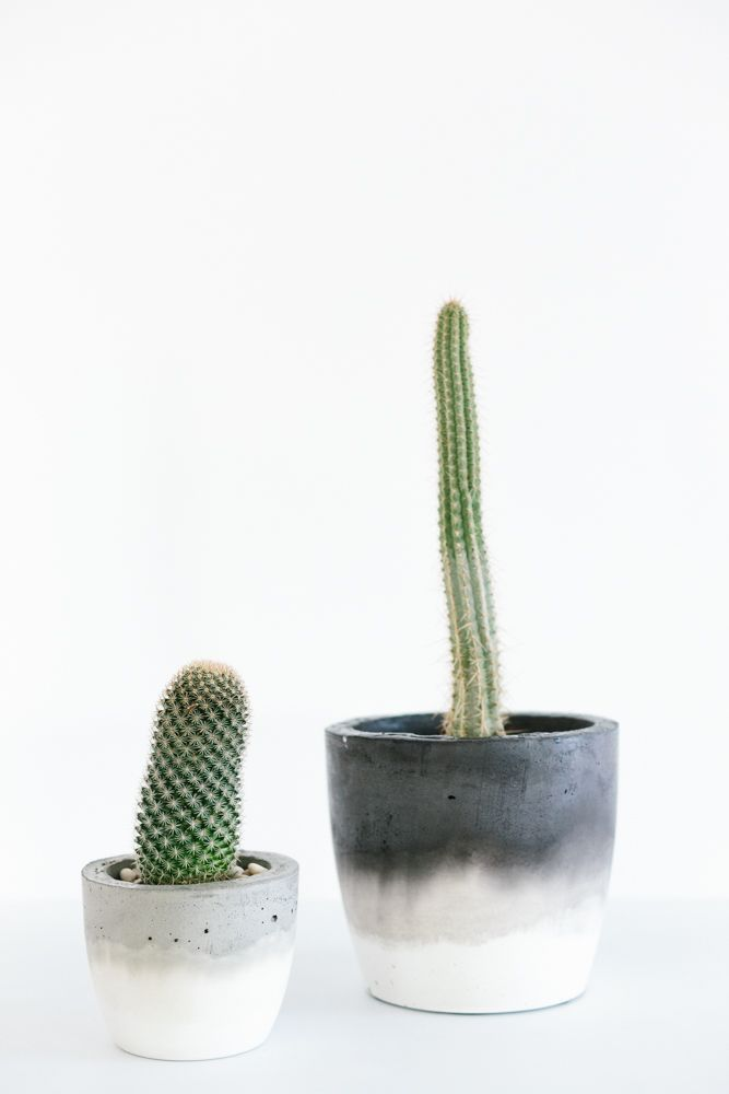 Fox & Ramona Concrete Homewares by Marnie Hawson | Made From Scratch