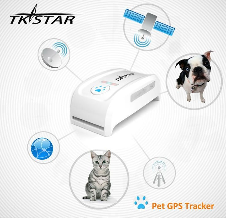 NEW 2015 Genuine TKSTAR Global Locator Real Time Pet GPS tracker for dogs cats,pet dog/cat gps collar tracking 1pc free shipping