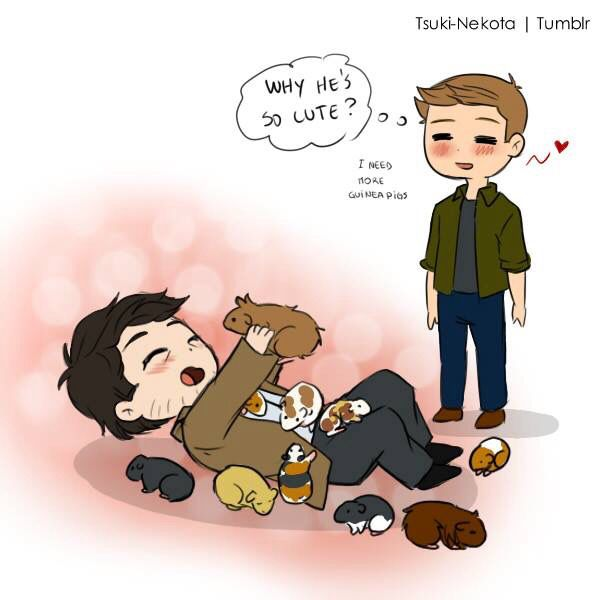 I know this is kinda  weird, but I make fancomics  where Dean is questioning why cas is so cute so when I found this I was like I'm not the only one! Lol!