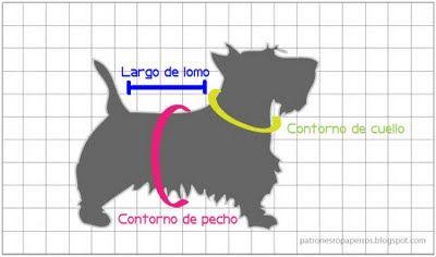 Patrones de ropa para perros: Cómo tomar las medidas del perro