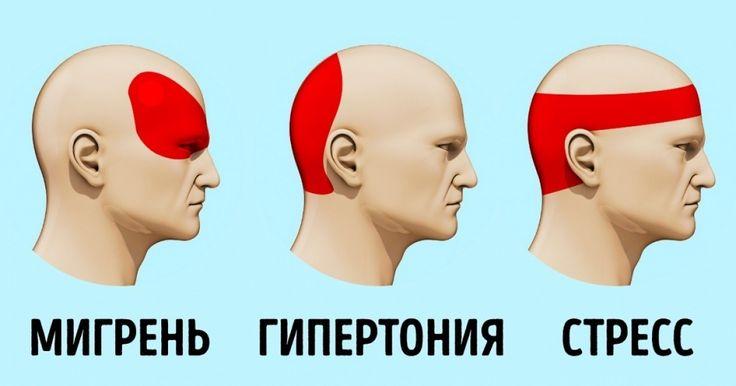 Когда увас раскалывается голова, анужной таблетки нет под рукой, ситуация кажется безвыходной. Ноэто нетак. Существует научный способ избавления отголовной боли, который называется акупрессура. Сегодня AdMe.ru расскажет вам про эту технику, которая эффективно ибыстро снимет головную боль.