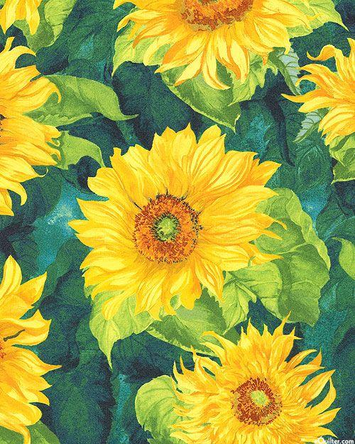 Slice of Sunshine - Provence Sunflowers - Teal