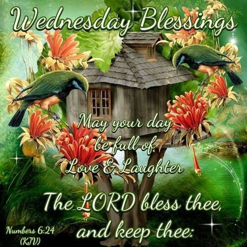 Wednesday Blessings In The Lord good morning wednesday hump day wednesday quotes good morning quotes happy wednesday good morning wednesday wednesday quote happy wednesday quotes beautiful wednesday quotes wednesday quotes for friends and family
