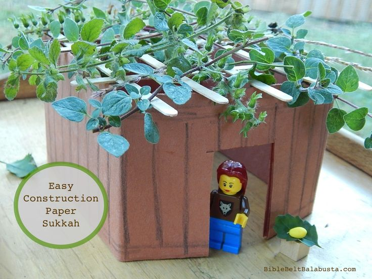 Origami sukkah:  one piece of paper, folded. Add herbs for fragrant roof!