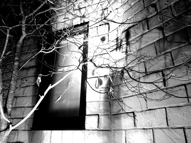 at night.  monochrome