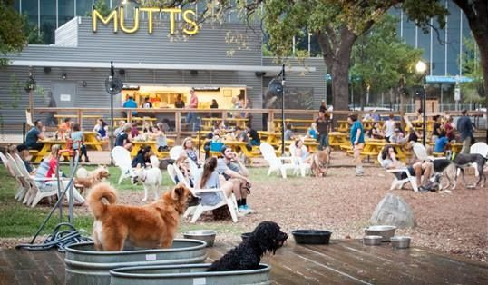 The Best Of Dallas, Texas For Dogs & Their Human Travel