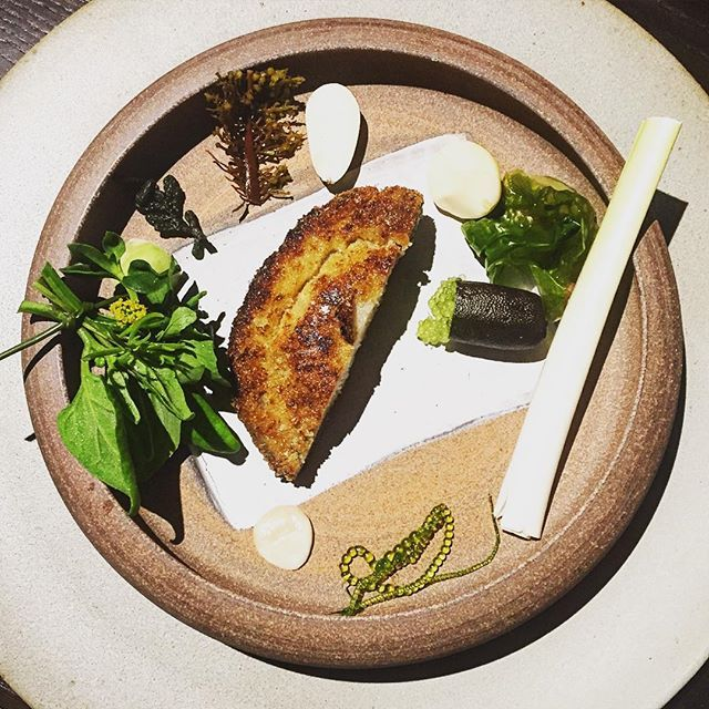 Abalone schnitzel with bush condiments. Just one of the incredible dishes in an unforgettable dinner at #nomaaustralia @nomacph @thecrumedia #restaurantaustralia