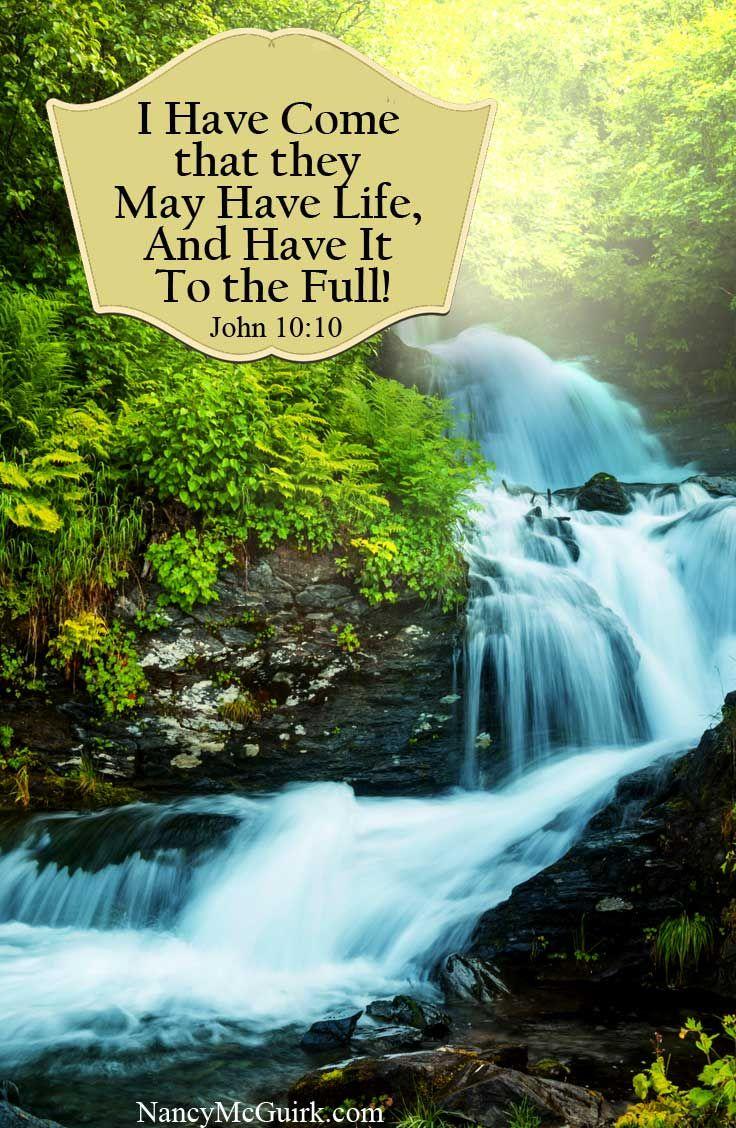 Bible Verse - John 10:10