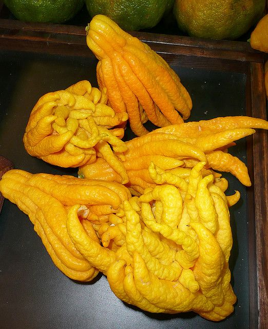 Buddha Hand-strangest looking citrus fruit I have ever seen!  Great for zesting  and used in marmalades and sauces