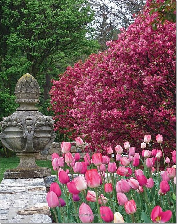 One of Carolyne Roehm's beautiful gardens in the spring.