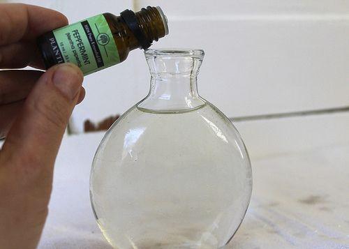 DIY Peppermint Mouthwash 1/2 c. aloe vera juice  1/4 c. water 1 tsp witch hazel  1 tsp baking soda 10 drops peppermint essential oil