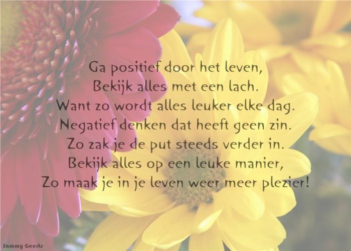 Citaten Geloven : Ga positief door het leven bekijk alles met een lach