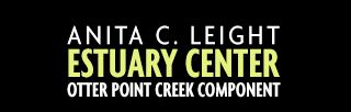 Anita C. Leight Estuary Center - tickle a toad and family fish fun