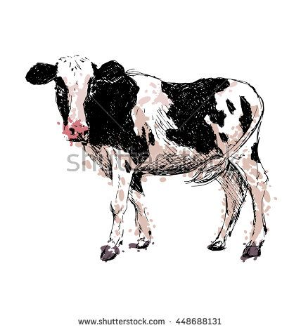 Colored hand drawing cow. Vector illustration