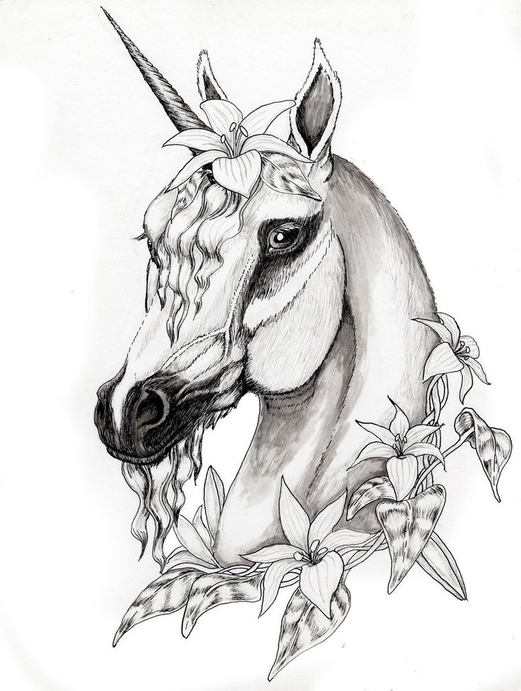 Colouring In Sheets Unicorn : 17 best images about clipart unicorns etc on pinterest