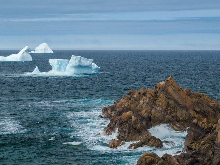 How to Experience Iceberg Season in Newfoundland