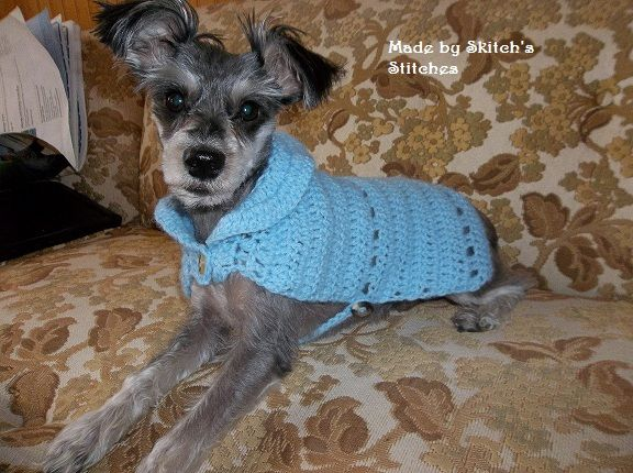 small dog sweater | Skitch's Stitches Crochet items ...