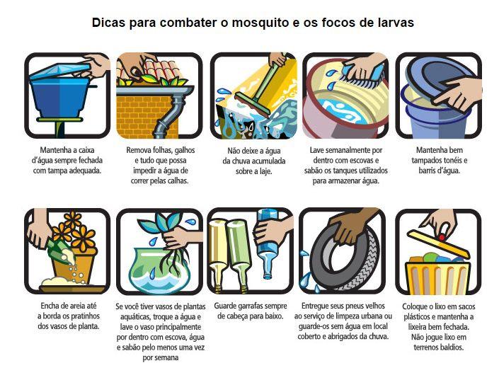 Estou Crescendo: Dengue: Entenda mais sobre essa epidemia e os sintomas