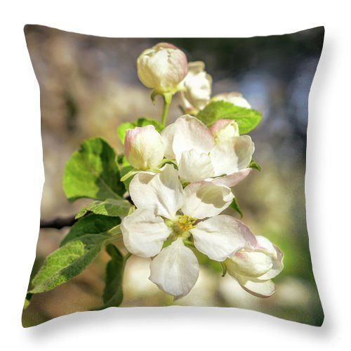 "Springtime - Blooming Tree - 3 Throw Pillow by Jane Star.  Our throw pillows are made from 100% spun polyester poplin fabric and add a stylish statement to any room.  Pillows are available in sizes from 14"" x 14"" up to 26"" x 26"".  Each pillow is printed on both sides (same image) and includes a concealed zipper and removable insert (if selected) for easy cleaning."