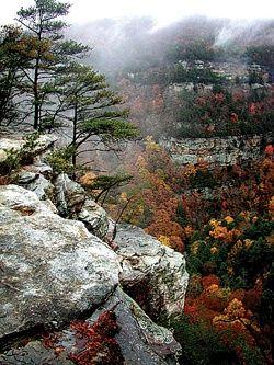 7) Take a visit to Cloudland Canyon State Park.
