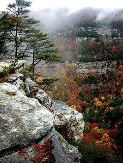 7) Take a visit to Cloudland Canyon State Park.